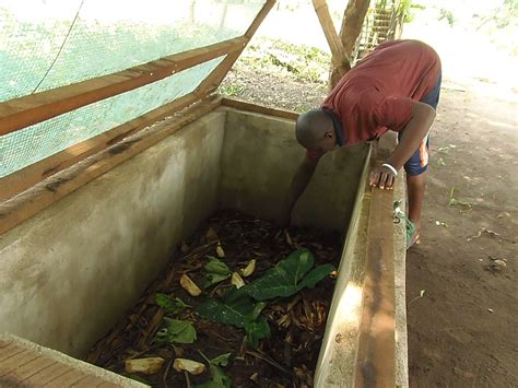 participatory development  alternative livelihoods