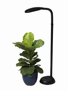 cfl grow light full spectrum floor plant lamp With led plant floor lamp