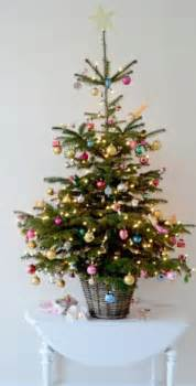 1000 ideas about small trees on tabletop tree trees