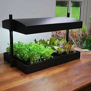 can you use a flood light to grow plants gardens models and self watering on pinterest