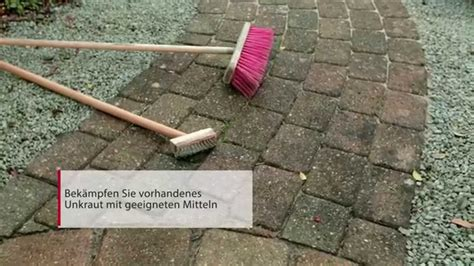 Unkraut Pflasterfugen Entfernen by Moos Entfernen Pflasterfugen Unkraut Und Moos Aus