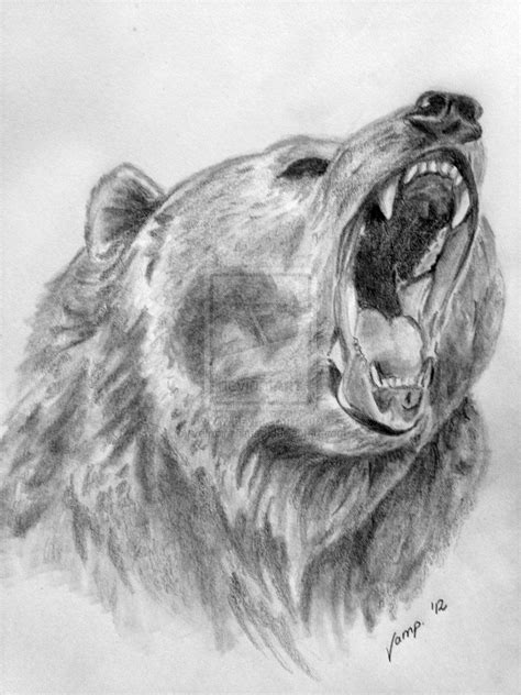 Pin by Lucas Zapico on Bear, Art, Sketches and Images | Bear drawing, Bear sketch, Bear tattoos
