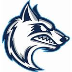 Mascot Wolf Transparent Coyote College Channel Logos