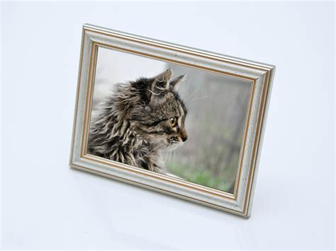 How To Replace Broken Glass In A Picture Frame