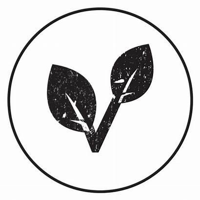 Plant Based Meat Taste Ish Advertising Woolworths