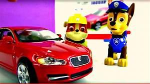 Pat Patrouille Francais Youtube : pat 39 patrouille construit une jaguar vid o ducative pour les enfants youtube ~ Medecine-chirurgie-esthetiques.com Avis de Voitures