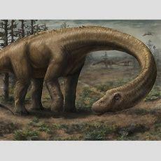 Jurassic Park  New Dinosaur Discoveries