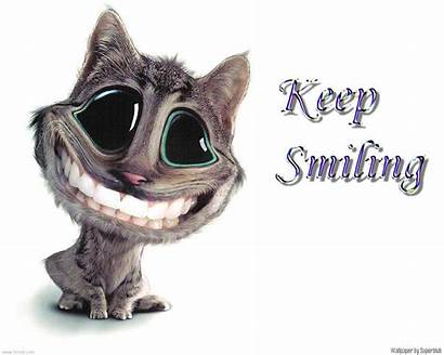 Funny Wallpapers Desktop 3d Cool Silly Animated