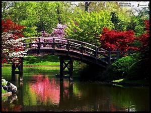 Beautiful Scenery Wallpaper Desktop Wallpaper ...