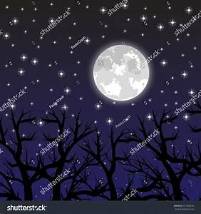 Moon In The Sky With The Stars In The Woods Stock Photo ...