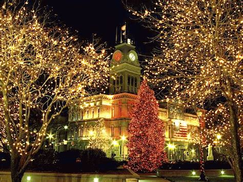 pretty twinkling lights pictures   images