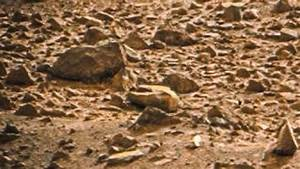 NASA Mars Rover: images: Dead Alien Found on Planet Mars ...