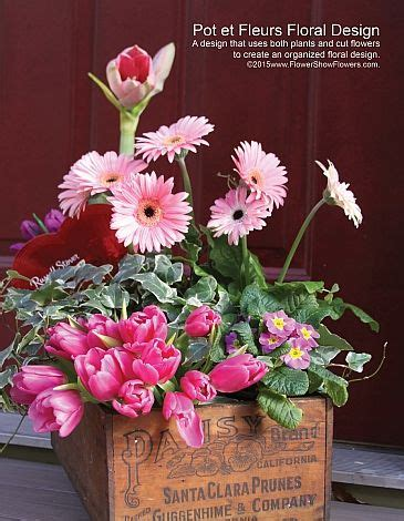 15 best pot et fleur 15 best pot et fleur images on flower jars