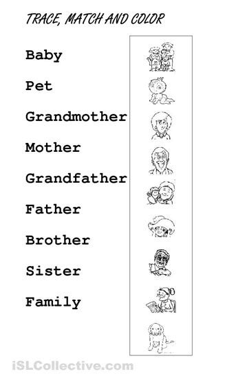 images  types  families worksheet