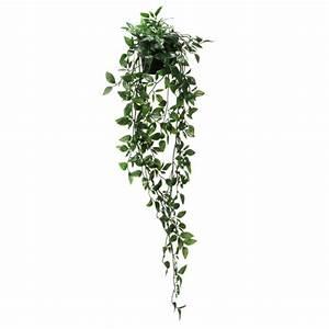 Wie Schnell Wächst Efeu : ikea fejka topfpflanze k nstlich kunstpflanze kunstblume efeu neu ebay ~ Orissabook.com Haus und Dekorationen
