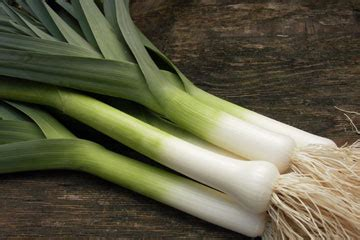 Leeks Images The Green Sanctuary Health Benefits Of Leek