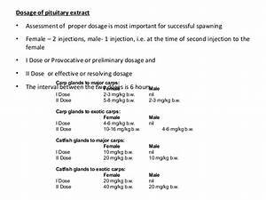 Fish Pituitary Gland