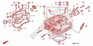 Cylinder Head For Honda Fourtrax 250 Recon Standard 2009
