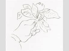 Gesture Matisse Drawing 4