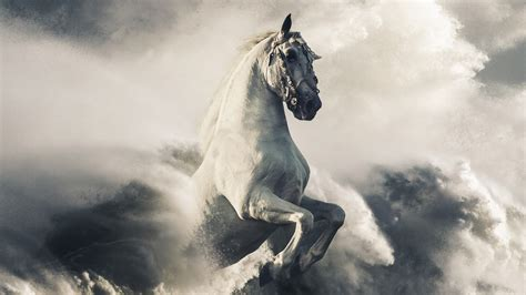 wallpaper pegasus white horse clouds waves hd animals