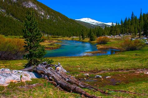 10 Must See Places In Yosemite National Park Camp Native