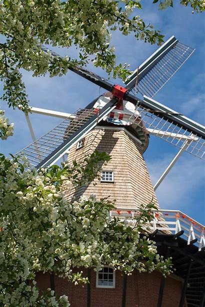 Windmill Holland Island Michigan Inside Gardens Dezwaan