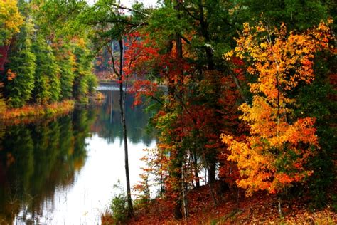 ultimate mississippi fall foliage road trip