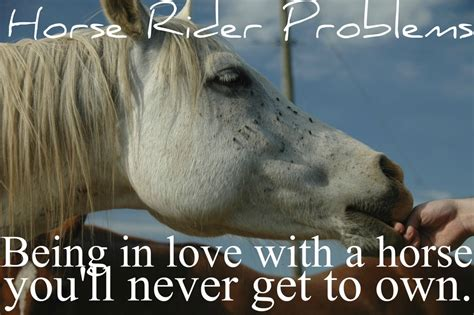 horse  goodbye quotes quotesgram
