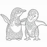 Puffin Zentangle Coloring Pages Penguin Penguins Adult Colouring Stylized Emperor Young Doodle Antistress Vector Clip Illustrations Freehand Isolated Sketch Drawing sketch template