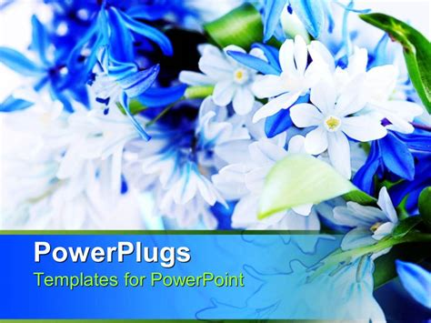 powerpoint template blue white spring bouquet  green