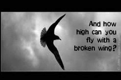 aerosmith lyrics images aerosmith aerosmith