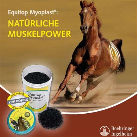 Equitop Myoplast Pferd