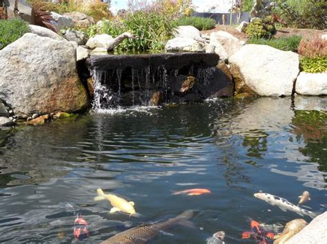 ponds designs with waterfall backyard waterfalls on pinterest small ponds ponds and backyard ponds