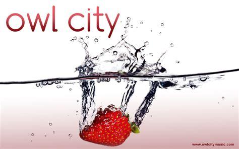 owl city owl city wallpaper  fanpop