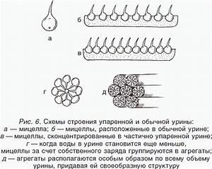 Псориаз мазь на основе солидола от псориаза