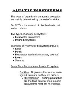 Water And Aquatic Ecosystems Worksheet