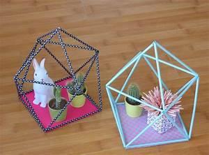 Diy quotterrariumquot geometrique en pailles geometric straw for Idees pour la maison 7 derniare semaine avant les vacances de no235l