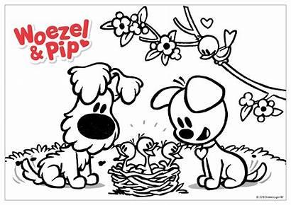 Kleurplaat Lente Pip Woezel Kleurplaten Puppy Hond