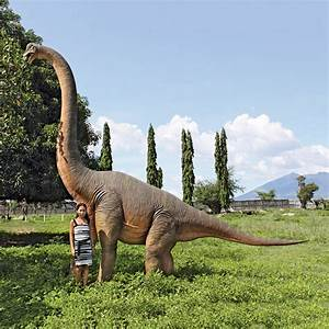 Massive Brachiosaurus Dinosaur Statue - The Green Head