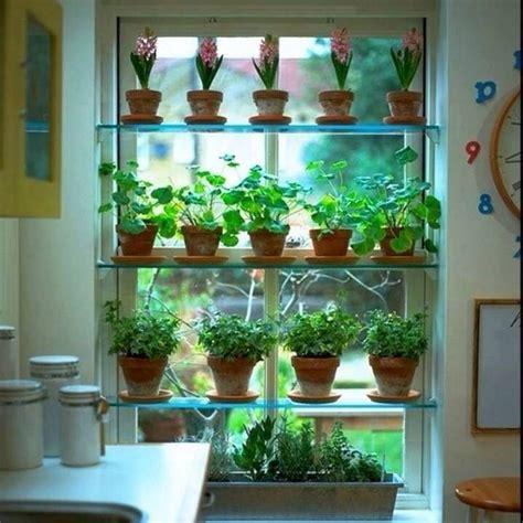Growing Herbs Inside by Best 25 Window Herb Gardens Ideas On Growing