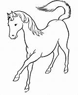 Horse Coloring Pages Printable Template Templates Colouring Pdf sketch template
