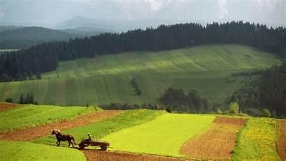 Rural Summer Landscape Landscapes Late Wallpapers Desktop