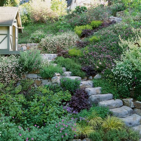 backyard hillside landscaping solutions slope success sunset