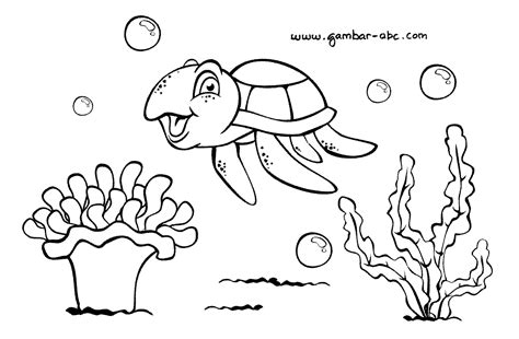 gambar mewarnai gambar ikan binatang laut belajar aneka
