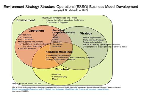 what is a business model file environment strategy structure operations esso