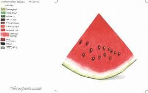Watermelon slice. Photo realistic colored pencil art
