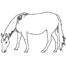 top   printable horse coloring pages