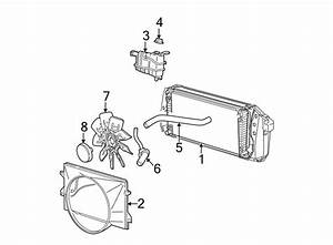Engine Diagram Water Pump 1997 Ford F 250 Super Duty
