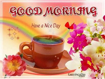 Morning Greetings Nice Cards Holidays