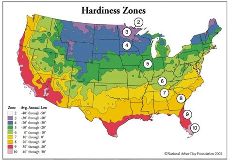 landscaping zones texas growing zone map